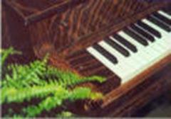 Fern piano