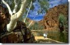 McDonnell ranges, Alice Springs, Australia